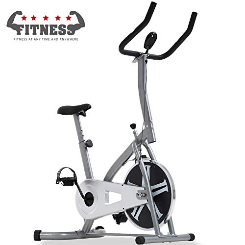 Exercise Bike Spin Bike Cycle Stationary Workout Equipment W/LCD Display Resistance Adjustment Easy to Move, Suitable for Most People, Easy to Use, Simple Assembly, Best Fitness Equipment - Silver