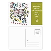 アドベンチャーワールドスパイダーパターンを発見してください 詩のポストカードセットサンクスカード郵送側20個