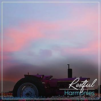 # 1 Album: Restful Harmonies