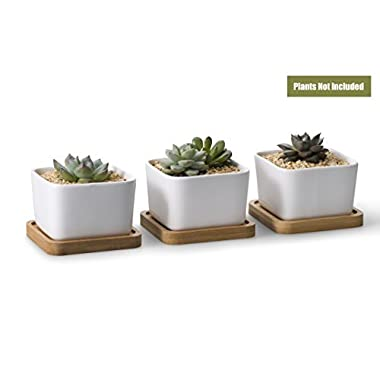 Opps 3.54 Inch White Ceramic Contemporary Square Design Succulent Plant Pot/Cactus Plant Pot With Bamboo Tray - Pack of 3