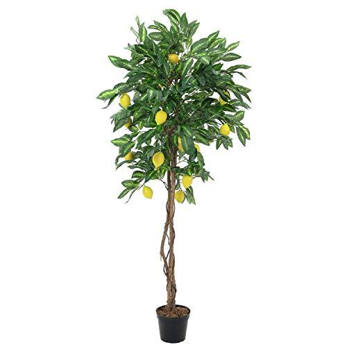artplants.de Set \'Künstlicher Zitronenbaum und UV Schutz Spray\' - Kunst Zitronenbaum Zoya, Naturstämme, mit Früchten, grün, 180cm
