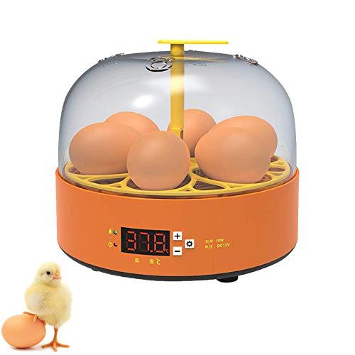 EFGS Incubadora Digital, Incubadora Automática Aves Corral Volteo Automático Huevos, Control Automático Temperatura para Experimento Científico