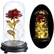 """PanDaDa Rose Plaqué Or 24K,""""La Belle Et La Bête Rose"""",Rose Eternelle Romantique, Rose Dorée Rouge,Fleur Artificielle avec LED Lumière en Dôme en Verre,Rouge"""