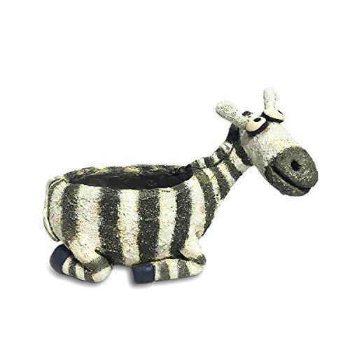 Ebenezer Zebra Planter