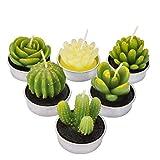 LA BELLEFÉE - 6 Velas Suculentas Plantas Cactus Decorativas para Casa Regalos para Halloween...
