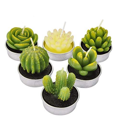 LA BELLEFÉE - 6 Velas Suculentas Plantas Cactus Decorativas para Casa Regalos para Halloween Navidad Cumpleaños Fiestas Boda Adorables Regalos para los Amantes de Suculentas