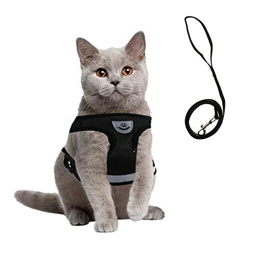 EKKONG Katzengeschirr, Katzengeschirr Ausbruchsicher, Geschirr für Katzen, Welpengeschirr mit Leine, Weich Brustgeschirr für Katzen Hunde Kitten