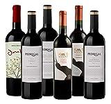Atlantik Weine, Südamerika Probierpaket Uruguay, Weinpaket mit Rotwein aus Uruguay, Rebsorten Tannat Merlot Cabernet Sauvignon und Syrah (6 x 0,75l)