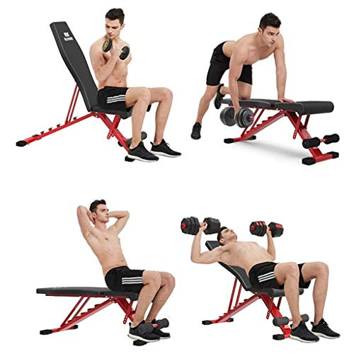 Adjustable Dumbbell Bench, Folding Weight Bench Press for Body Workout Fitness, 220 LBS Capacity, Workout Bench for Incline Decline Flat Exercise Training Black