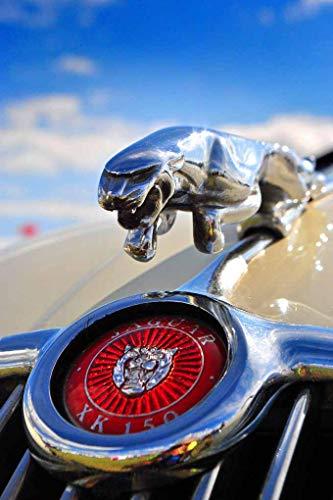 Jaguar Classic Car Leaping Cat Leaper Bonnet Hood Ornament And Badge Photograph (6'x9')