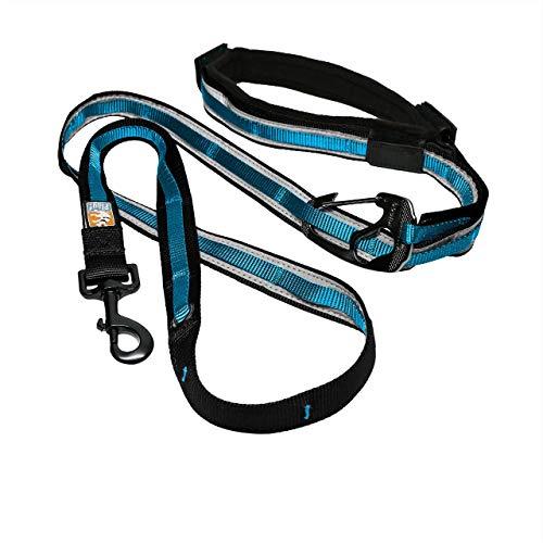 Kurgo Quantum (TM) Hände frei Hundeleine für laufen, gehen oder Wandern & reflektierende Hundeleine mit verstellbare Taille Gürtel, 6 Varianten in einer flexi hundeleine, blau