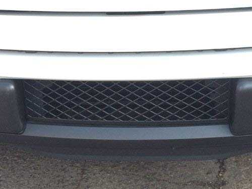 EcoBoost Grilles 2009-2014 F150 Lower Bumper Grille Black OEM Style Durable ABS Plastic Lower Bumper Insert Grille - Accesspeed 7002-1402, Fits 2009 2010 2011 2012 2013 2014 F-150 Trucks