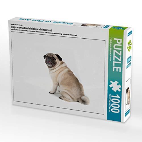 CALVENDO Puzzle Mops - unwiderstehlich und charmant 1000 Teile Lege-Größe 64 x 48 cm Foto-Puzzle Bild von Verena Scholze