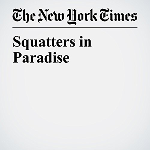 Squatters in Paradise copertina