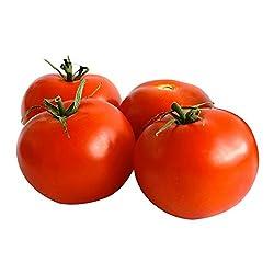 Organic Gourmet Round Tomatoes, 500g
