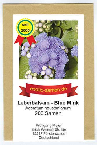 Leberbalsam - Ageratum houstonianum - Blue Mink - 200 Samen