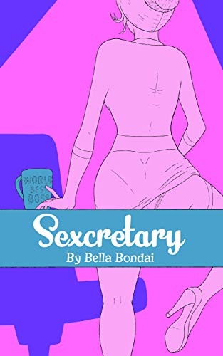Sexcretary (The Unprofessional Professional Diaries Book 1) (English Edition)