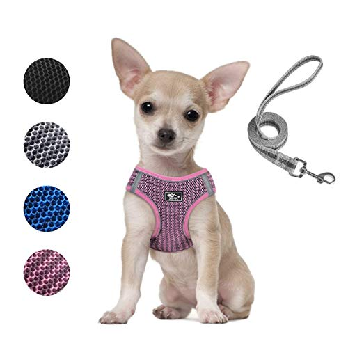 Dog and Cat Universal Harness with Leash Set- Cat Harness Escape Proof - Adjustable Reflective Step in Dog Harness for Small Dogs Medium Dogs - Soft Mesh Comfort Fit No Pull No Choke, Pink, XS