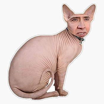 Nicholas Cage Cat Sticker Decal Bumper Sticker 5