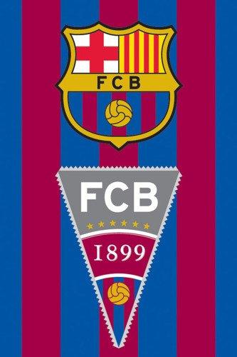 FC Barcelona Toalla 100% algodón, Multicolor, 40 x 60 cm
