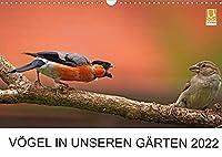 Voegel in unseren Gaerten 2022 (Wandkalender 2022 DIN A3 quer): Heimische Vogelarten in unseren Gaerten. Fotografiert von Lutz Klapp. (Monatskalender, 14 Seiten )