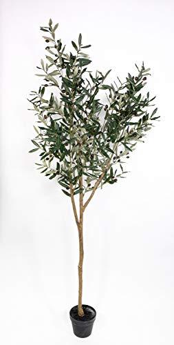 Olivenbaum 190cm im Topf ZF Kunstbaum Kunstpflanzen künstlicher Baum Olivenbaum Dekobaum