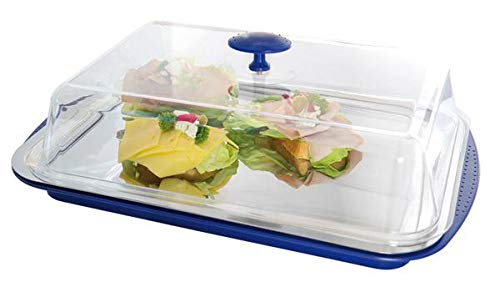 APS Thermo-Set 5-teilig – Hochwertiges Tablett-Set bestehend aus Einer stabilen Schale, einem Edelstahl-Tablett, Zwei Kühl-Akkus und Einer Frischhaltehaube