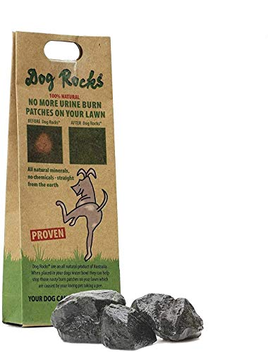 Dog Rocks Urinpflaster Preventer 200g Beutel
