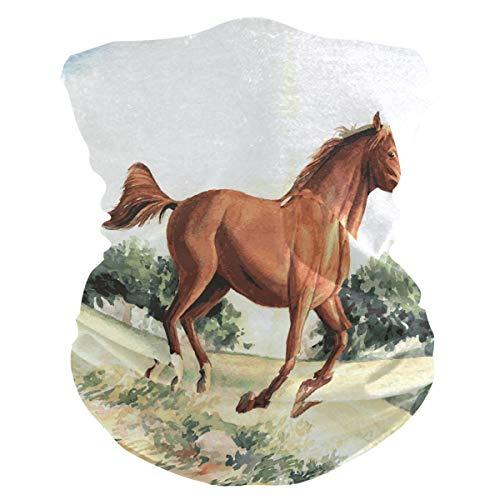 Sawhonn Art Paint Hardlopen Paard Gezicht Masker Hoofdband Bandana Balaclavas Neck Gaiter Magic Sjaal Hoofddeksels voor Outdoor Vrouwen Mannen
