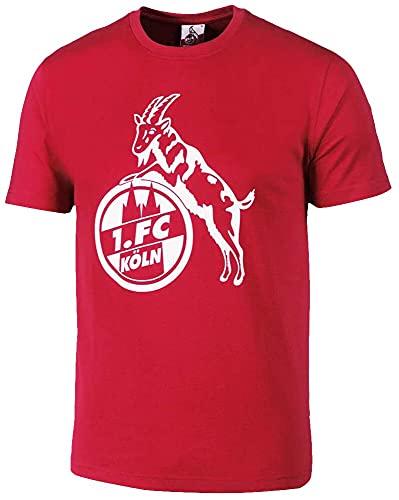 1. FC Köln Basic Männer T-Shirt rot L 100% Baumwolle Fan-Merch, Fußball, Sport