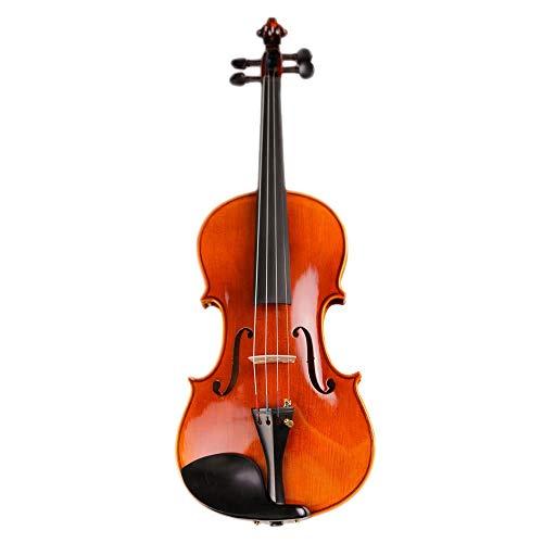 Durable Musikinstrument Hochwertige professionelle handgefertigte akustische Violine Antike Stil Ebenholzteile Violine mit Hardcase Kolophonium Bogen for Anfänger Studenten Exquisiter Aussehen