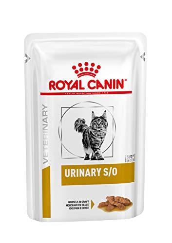 ROYAL CANIN Urinary S/O Katze Morsels in Gravy (Fleischstücke) - 12 x 85 g