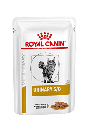 royal canin so