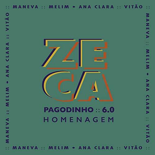 Zeca Pagodinho 6.0 - Homenagem