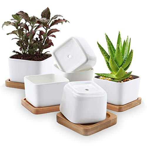 Succulent Planters, OAMCEG 3.35 inch Square Design for Succulent/Cactus, Set of 6 White Ceramic Succulent Cactus Planter Pots with Bamboo Tray(Plants NOT Included)