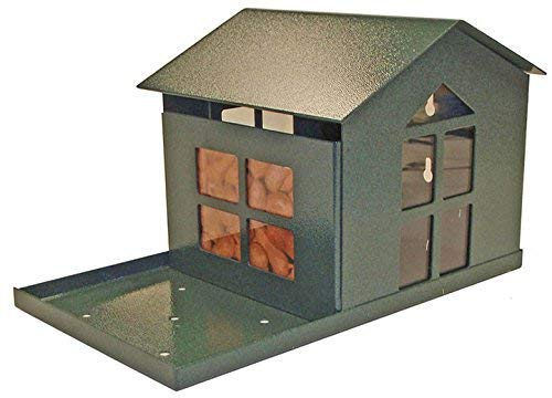 Erva Durable Bird Proof Squirrel Feeder - If You Can't Beat Them, Feed Them - Made in The USA