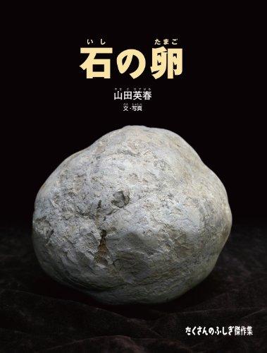 石の卵 (たくさんのふしぎ傑作集)
