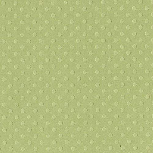 Celtic Green - 12x12 Dotted Swiss Cardstock by Bazzill   80 lb Swiss Dot Embossed Green Scrapbook Paper   Premium Card Making Cardstock for Paper Crafts   25 Sheets