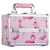 Frenessa Makeup Box Cosmetic Train Case for Lady Large Capacity Portable Carrying Handle with Mirror Lockable Jewelry Organizer Travel Storage for Girls and Women - Pink