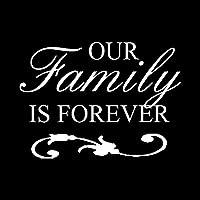 15.4CM * 11.1CM私たちの家族は永遠カーステッカービニールステッカーブラック/シルバーC3-2073 IS (Color Name : Silver)