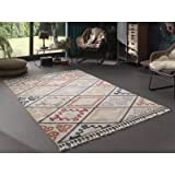 Kilim Tapis de Salon Ethnique - Multicolore (Multicolore 156, 160 x 230 cm)