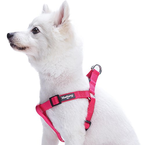 Blueberry Pet Essentials 21 Colors Step-in Classic Dog Harness, Chest Girth 16.5' - 21.5', French Pink, Small, Adjustable Harnesses for Dogs