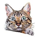 Pinicecore Gato Y Perro Hierro En Parches Cats Surtidos Coser En Parches DIY Decoración O Reparación, Apliques Bordados para Mochilas De Ropa Camisetas Caps