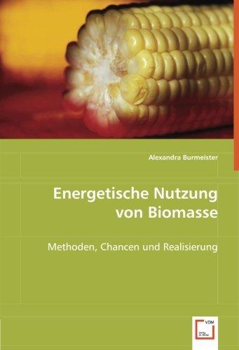 Energetische Nutzung von Biomasse: Methoden, Chancen und Realisierung
