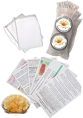 Half Cup Live Florida Sun Kefir Water Kefir Grains (Tibicos) Natural Probiotics TWO BREWING BAGS INCLUDED
