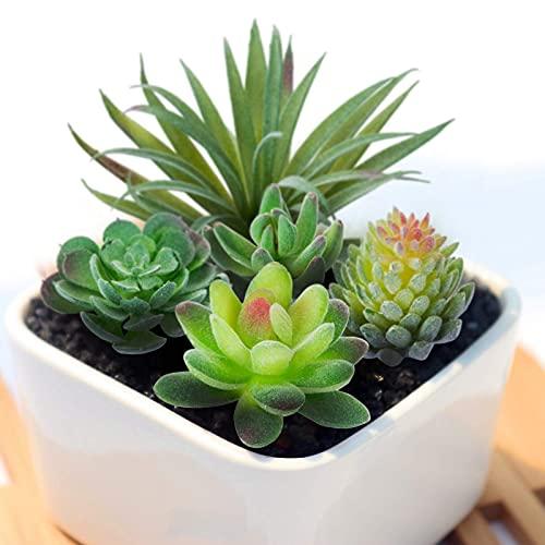 Gwhole 16 Pz Piante Succulente Artificiali, Misti Piante Grasse Finte Decorative, Piante Grasse Artificiali Piccole Cactus Fiore Artificiale Succulente per La Casa Giardino Decorazioni