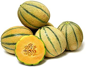 Amazon Com Tuscan Cantaloupe Super Sweet Juicy Fruit Sweet Aroma Rich Flavor Mmmm 10 Seeds Garden Outdoor Only contaminated cantaloupes are advised to avoid during the pregnancy period, to make sure its safety make sure to buy cantaloupes with a label sticker in a trusted local organic market or. amazon com tuscan cantaloupe super