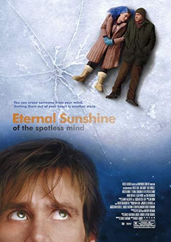 2-HOAE08 Eternal Sunshine of The Spotless Mind 60cm x 85cm,24inch x 34inch Silk Print Poster