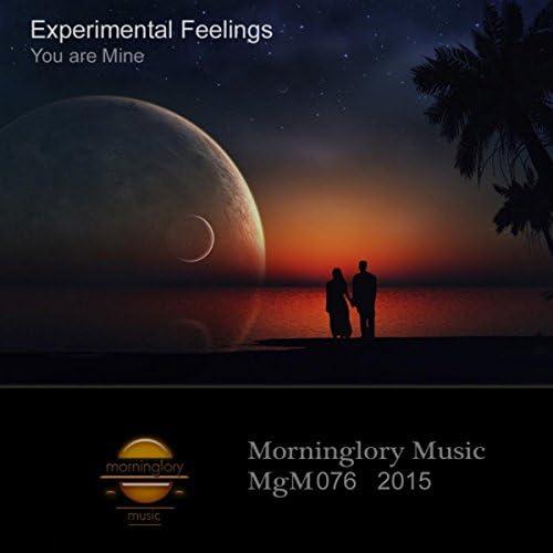 Experimental Feelings