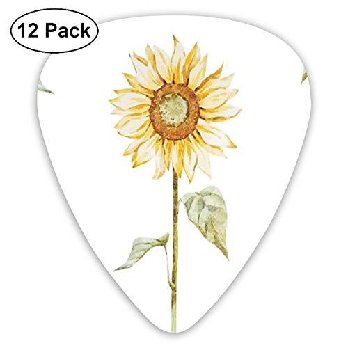 Sonnenblume Helianthus Sonnenblumen gegen verwitterten gealterten Zaun Sommergarten Foto Braun Gelb 1 (12er Pack)